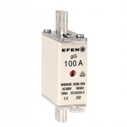 N Wkładka bezpiecznikowa Gr.000 100A AC 500V gG